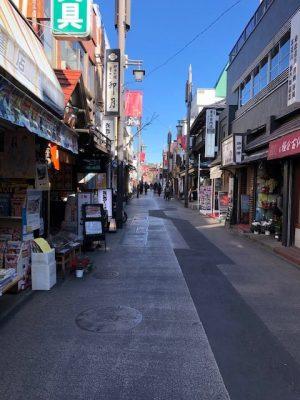 新年の挨拶 鎌倉・葉山